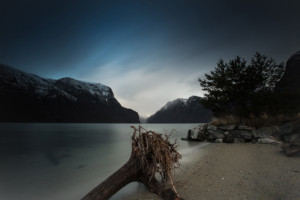 The-Driftwood-And-The-Fjord-By-Paul-Edmundson